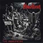 Merciless - the awakening (clear vinyl, lim. 375)