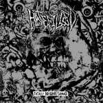 Hatefilled - totally disfigured carnage (black vinyl, lim. 300), LP